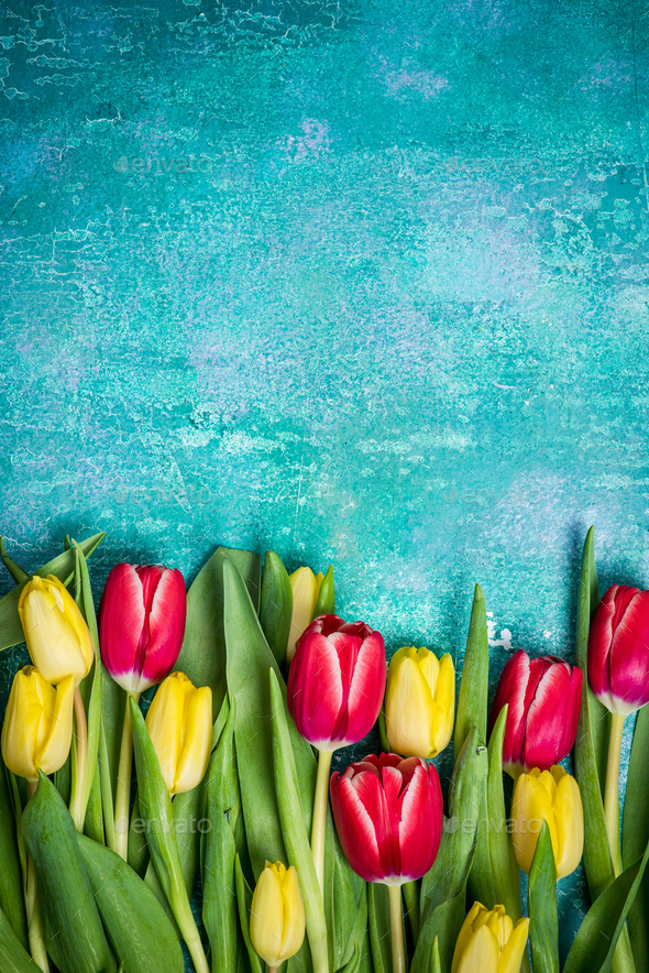 Fresh tulips Womens Day card mock up - Stock Photo - Images