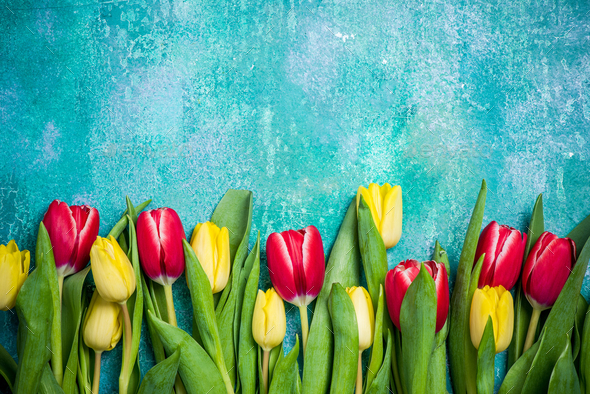 Mothers Day or Womens Day card mock up with tulips - Stock Photo - Images