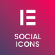 Social Network Icons for Elementor Page Builder