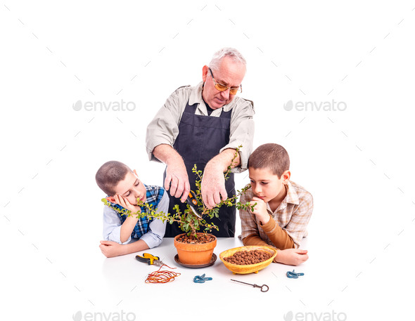 Happy senior man with his grandchildren - Stock Photo - Images