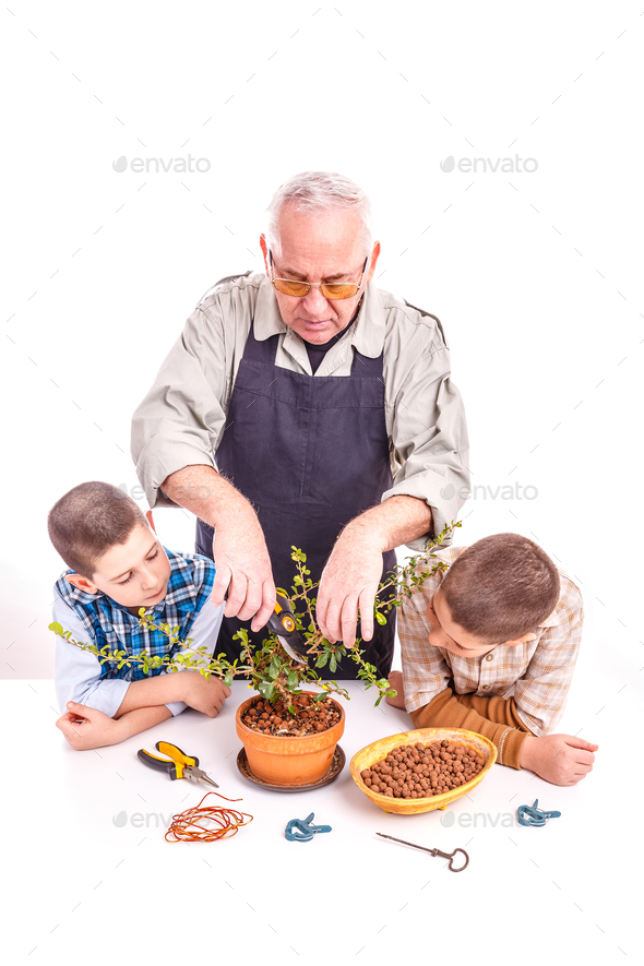Senior man with his grandchildren - Stock Photo - Images