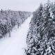 Top Down View of the Forest in Winter - VideoHive Item for Sale