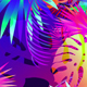 Pop Tropical Loops - VideoHive Item for Sale