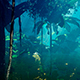 Tropical Jungle With Plants - VideoHive Item for Sale