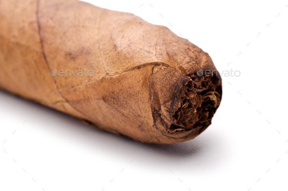 Cigar tip isolated on a white background - Stock Photo - Images