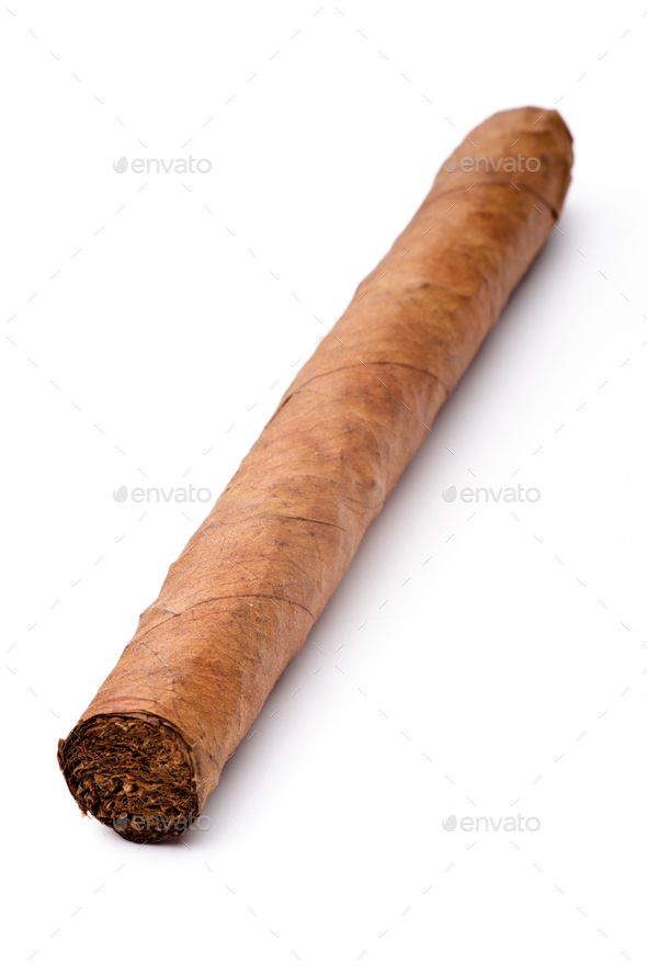 Single cigar isolated on a white background - Stock Photo - Images
