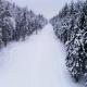 Flying Over Ski Track  - VideoHive Item for Sale
