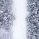 Winter Landscape in the Forest - VideoHive Item for Sale