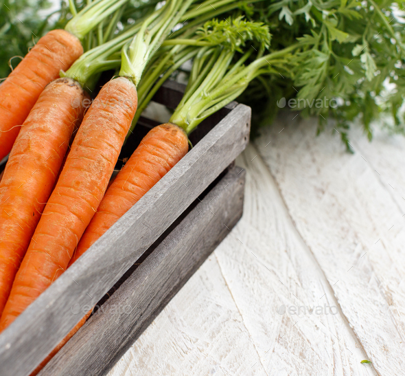 Fresh raw carrots with leaves - Stock Photo - Images
