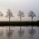 Van Starkenborgh canal - PhotoDune Item for Sale