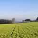 Hilly landscape at Doenrade - PhotoDune Item for Sale