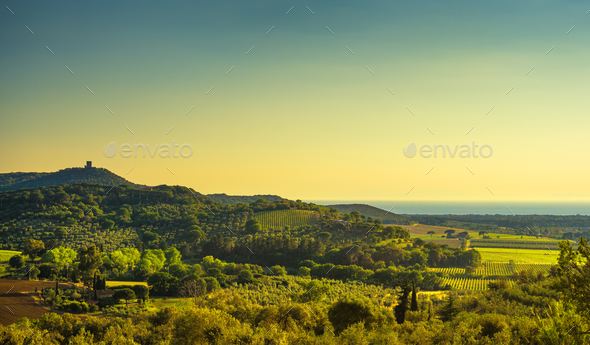Bolgheri and Castagneto vineyard aerial view on sunset. Maremma - Stock Photo - Images