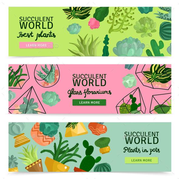 Succulents Banners Set - Business Conceptual