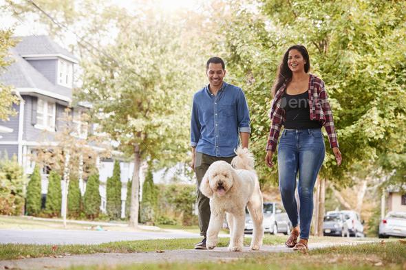 Couple Walking Dog Along Suburban Street - Stock Photo - Images