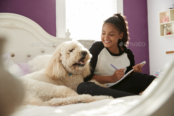 Young teen girl doing homework on her bed with pet dog - Stock Photo - Images