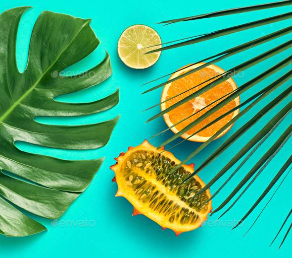 Tropical Palm Leaves. Bright Summer Set. Vegan - Stock Photo - Images