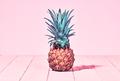 Tropical Pineapple. Vanilla Pastel Color. Vintage - PhotoDune Item for Sale