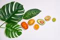 Tropical - PhotoDune Item for Sale