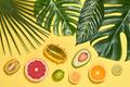 Tropical Palm Leaves. Bright Summer Set. Vegan - PhotoDune Item for Sale