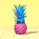 Tropical Pineapple. Bright Summer Color. Minimal. - PhotoDune Item for Sale
