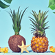 Tropical Pineapple and Coconut.Bright Summer Color - PhotoDune Item for Sale
