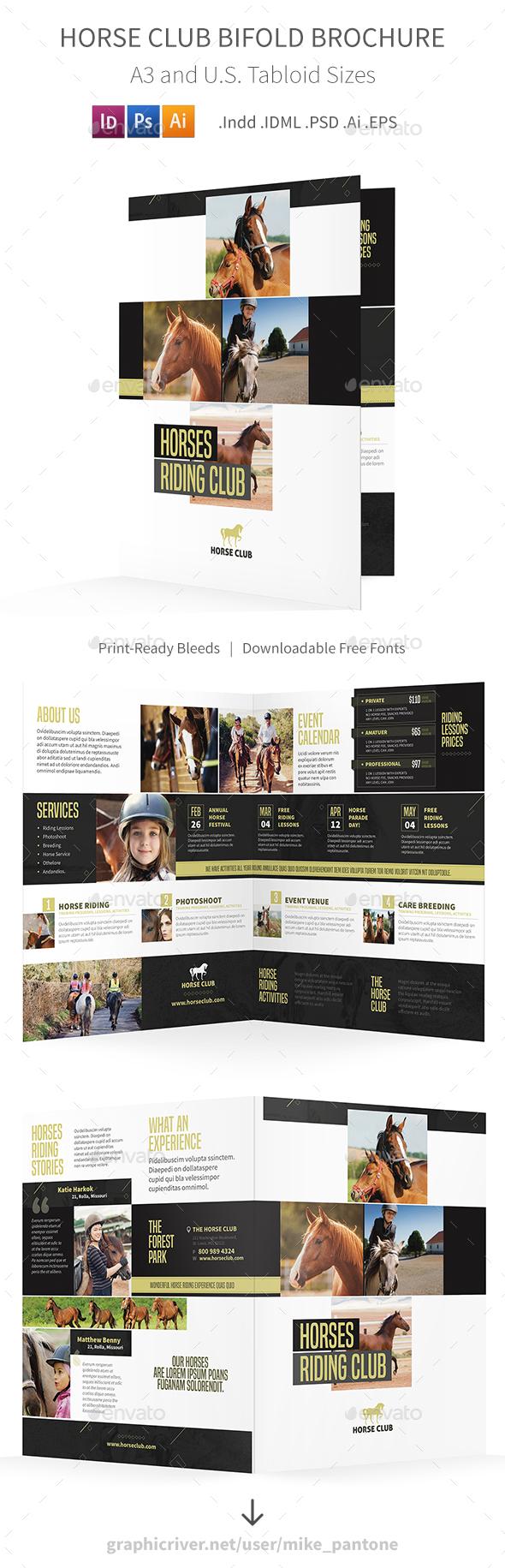 Horse Club Bifold / Halffold Brochure - Informational Brochures