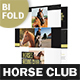 Horse Club Bifold / Halffold Brochure - GraphicRiver Item for Sale