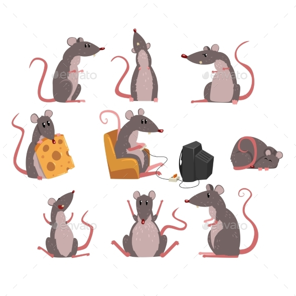 Grey Mouse Set - Animals Characters