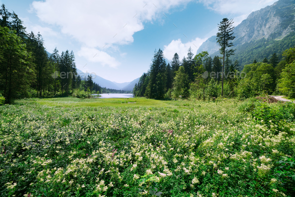Amazing sunny summer day on the Hintersee lake - Stock Photo - Images