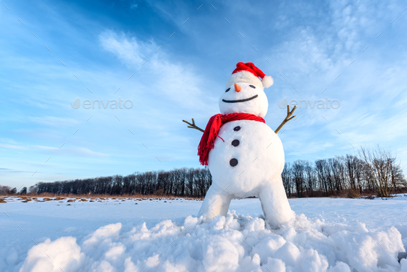 Funny snowman in red hat - Stock Photo - Images