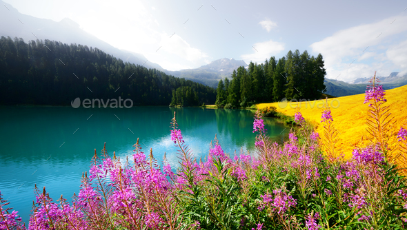 Amazing sunny day at Champferersee lake in the Swiss Alps - Stock Photo - Images