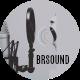 bradrounds