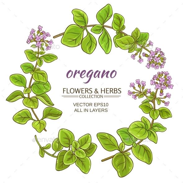 Oregano Vector Set - Food Objects