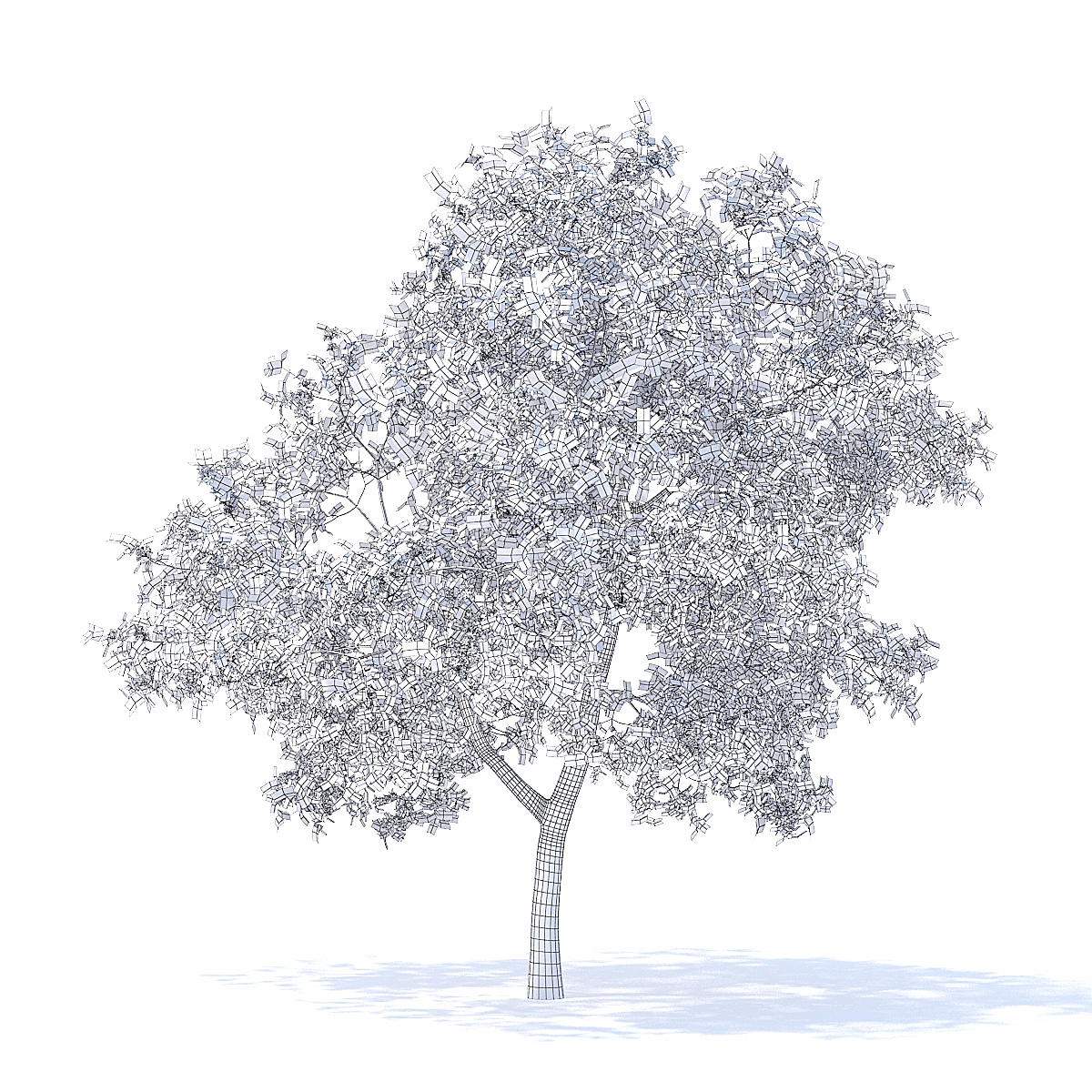 Apple Tree 3D Model 3.7m