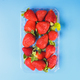 red fresh strawberries in container on blue background - PhotoDune Item for Sale