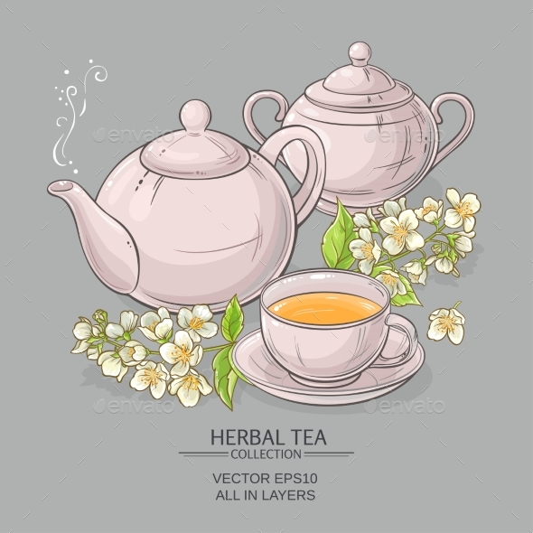 Jasmine Tea Vector Illustration - Food Objects