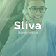 Sliva Business Powerpoint Template