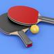 Ping pong equipment - PhotoDune Item for Sale