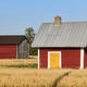 Traditional finnish red wooden farms in the countryside. Finland  - PhotoDune Item for Sale