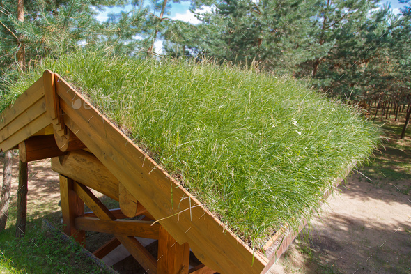 Grass Roof is environmentally friendly - Stock Photo - Images