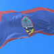 Flag of Guam Waving - VideoHive Item for Sale