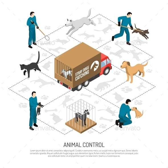 Animal Control Service Isometric Poster - Animals Characters