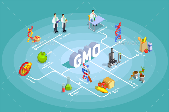 Genetically Modified Organisms Isometric Flowchart - Food Objects