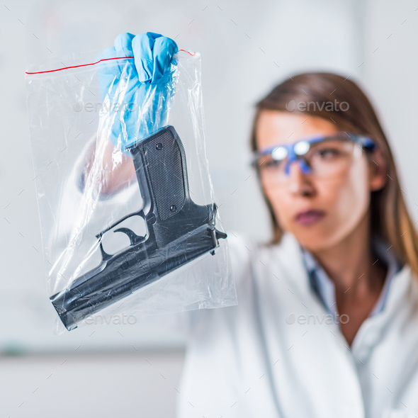 Forensic science expert examining gun collected at a crime scene - Stock Photo - Images