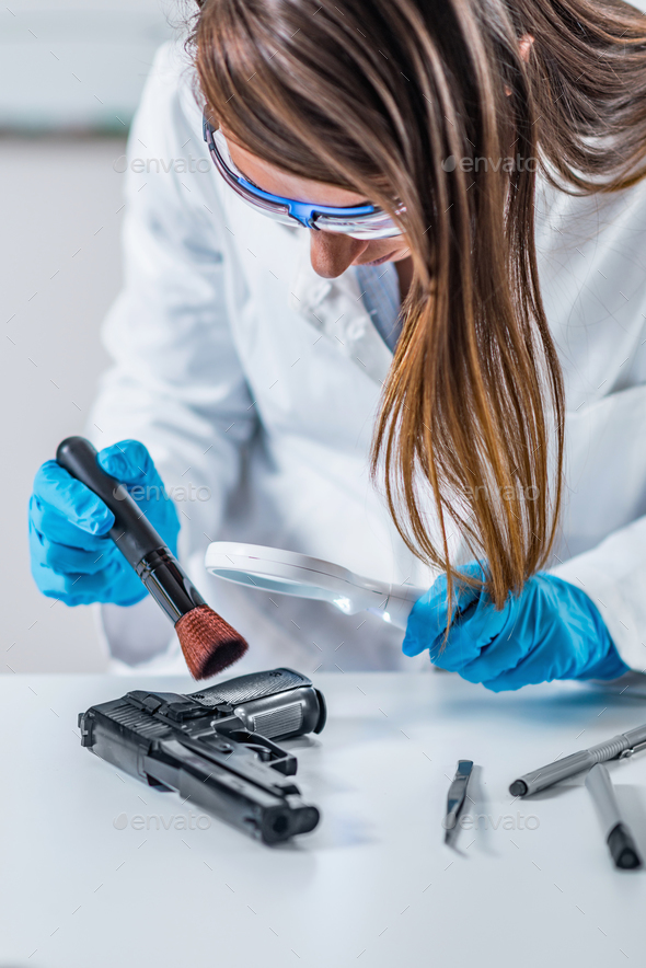 Forensic Science Expert Examining Gun Collected At A Crime Scene Stock Photo By Microgen