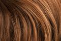 Wavy red human hair - PhotoDune Item for Sale