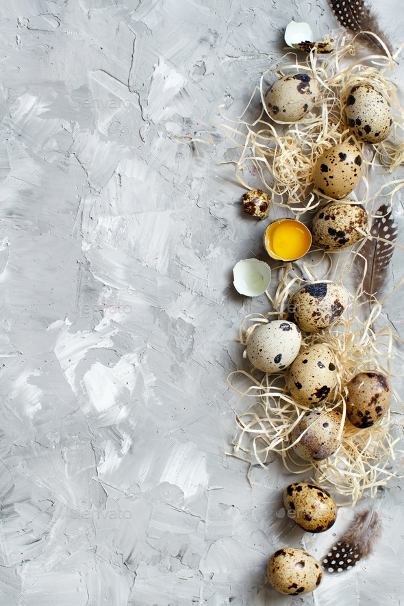 Quail eggs top view - Stock Photo - Images