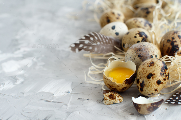 Quail eggs close up - Stock Photo - Images