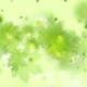 Light Green Shiny Summer Leaves Abstract  - VideoHive Item for Sale