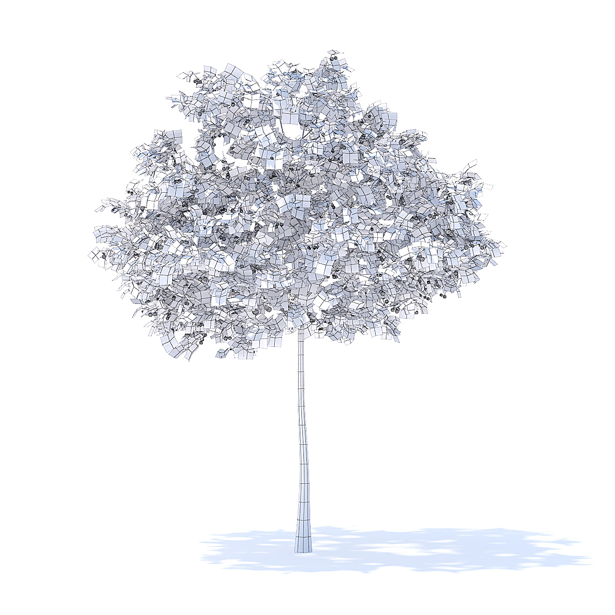 Cherry Tree with Fruits 3D Model 3.3m